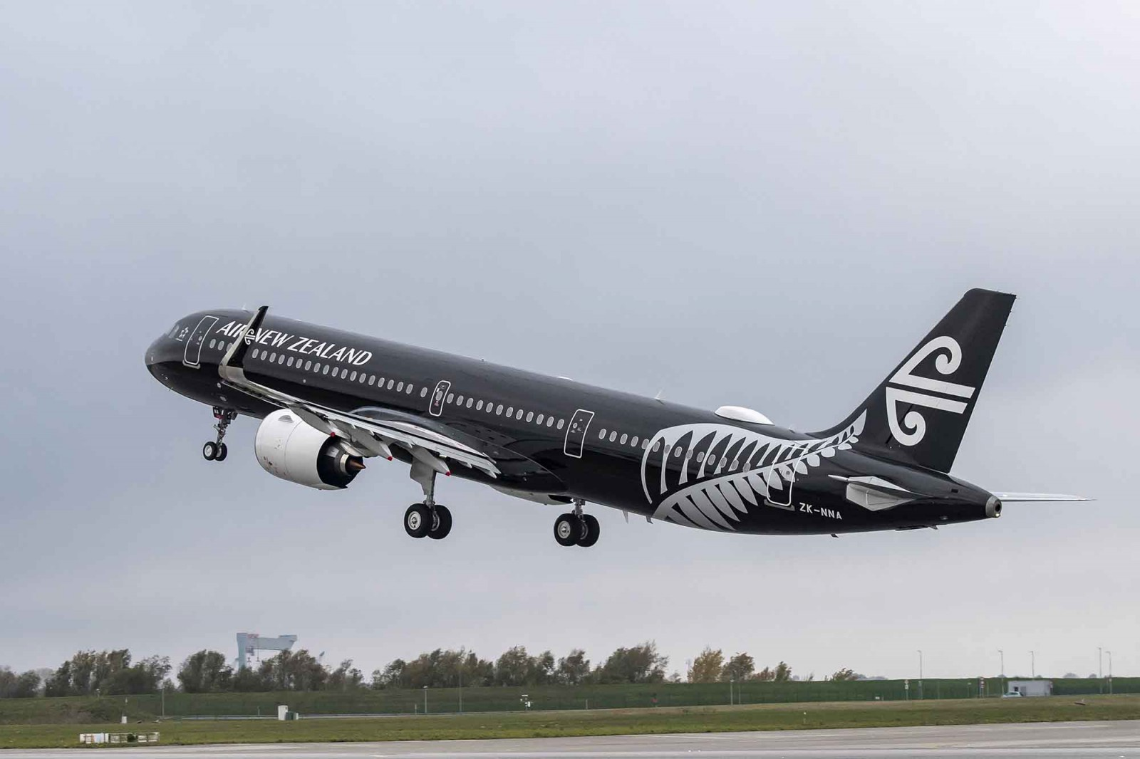 Air New Zealand halts flights to Seoul amid coronavirus outbreak