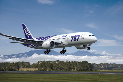 ANA 787  Picture: ANA