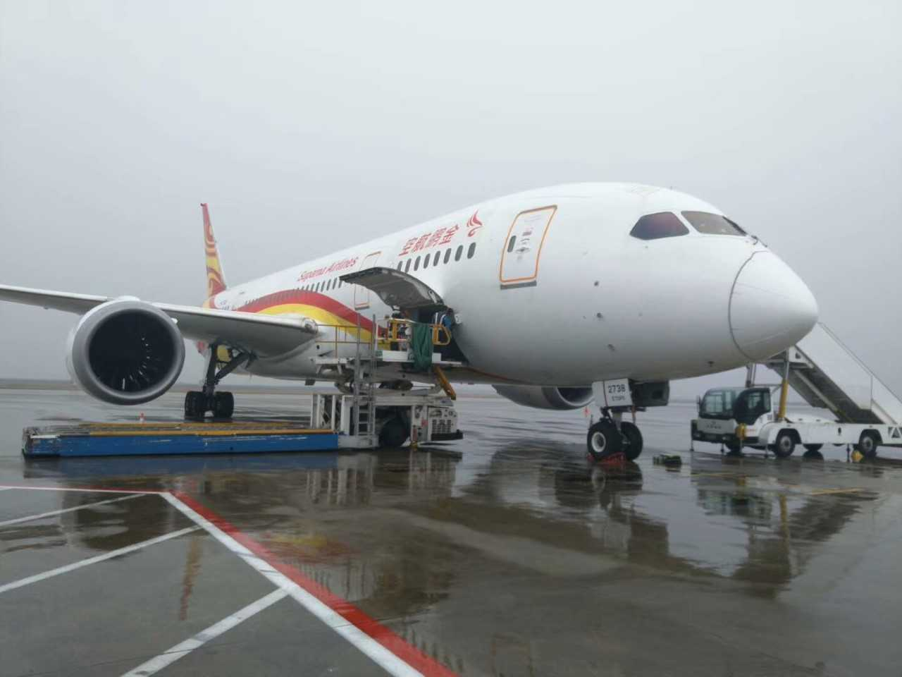 Suparna 787 plane