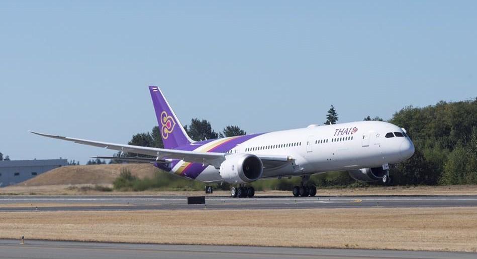 Thai suspends flights