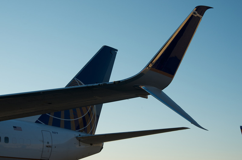 United routes growth bucks trend