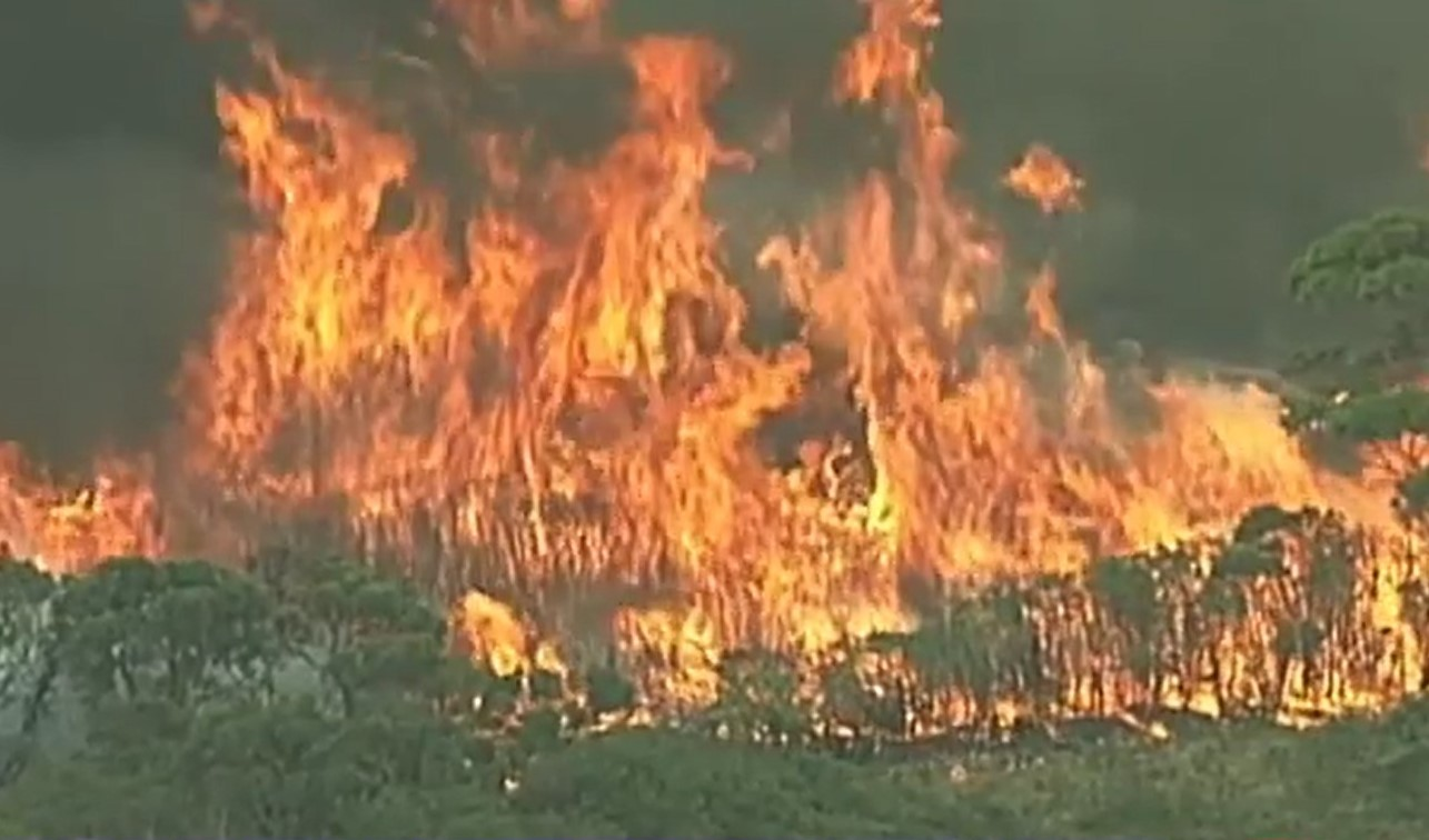 bushfires airlines