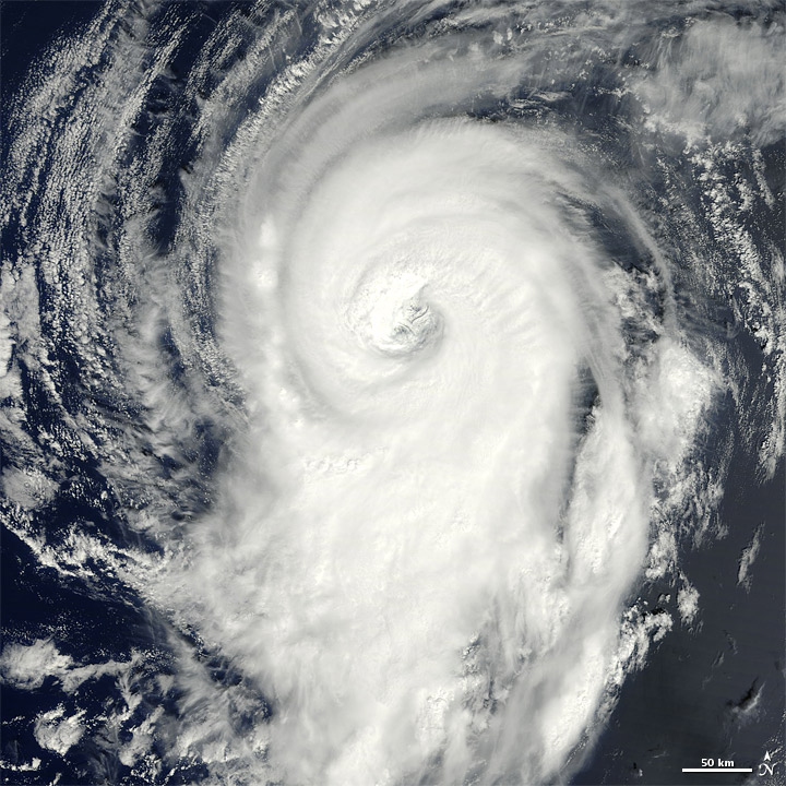 Hurricane Michael florida airlines cancllations