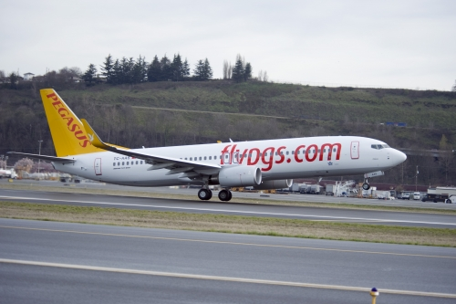 Pegasus aircraft  Picture: Pegasus