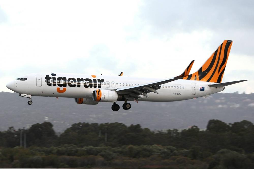 Updated Tigerair Negotiations Continue Amid Claim It Broke Charter